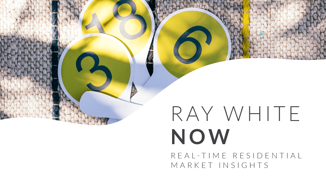 Ray White Now – Volume 41